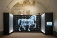 Vigevano - Museo Leonardiana